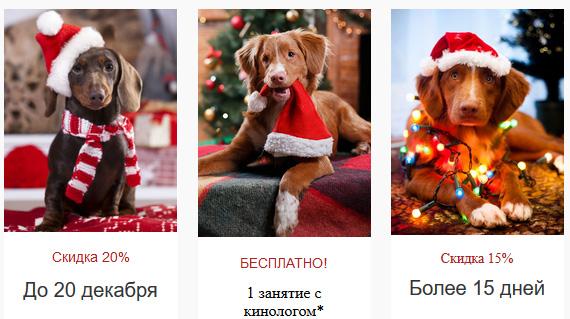 Цены на передержку собак в 2019