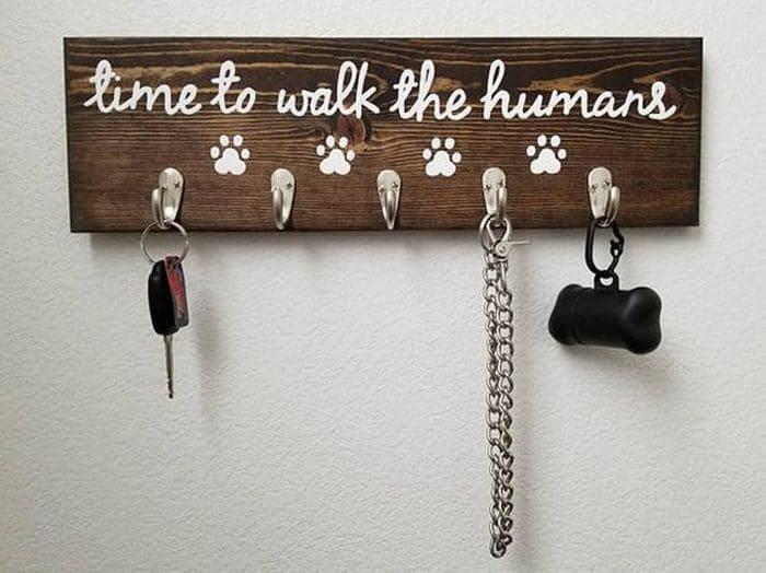 сколько раз нужно гулять с собакой в день